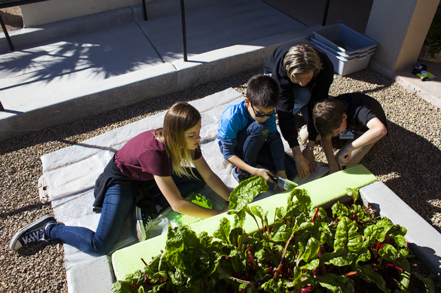 Faith Lutheran Middle Schoolճ students  Laynie Milohnic, 12, left, Sean Keegan, 11 and Christian Culotte, 11, help paint a planter box with help from their teacher Kelli Ongman at 9th Bridge ...