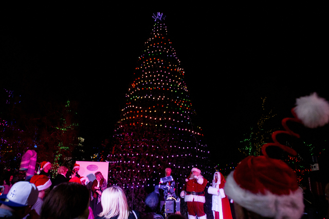 A crowd watches as the 25th Tree Lighting Ceremony at Opportunity Village takes place joined by Mayor Carolyn Goodman, CEO and President of Opportunity Village, Bob Brown, and Santa and Mr. Clause ...