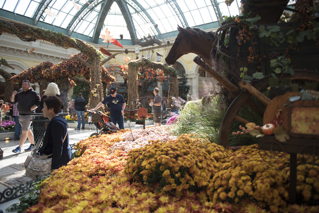 Las Vegas horticulturist found \'dream job\' in Bellagio Conservatory ...