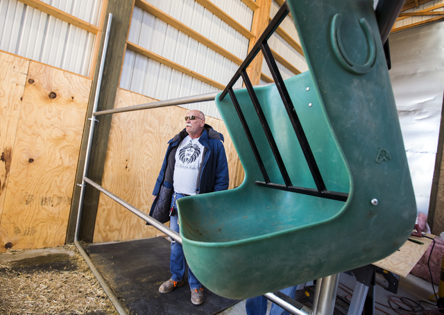 Keith Evans, owner of The Lion Habitat Ranch in Henderson, stands in a barn recently built for  Ozzie, the giraffe, on Friday, Nov. 25, 2016. The facility acquired the giraffe from the Tanganyika  ...