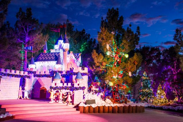 A look at the Opportunity Village Magical Forest, which opened Friday night and is in operation through New Year's Day. (Courtesy photo)