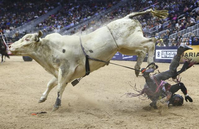 Professional Bull Riders Las Vegas Review Journal