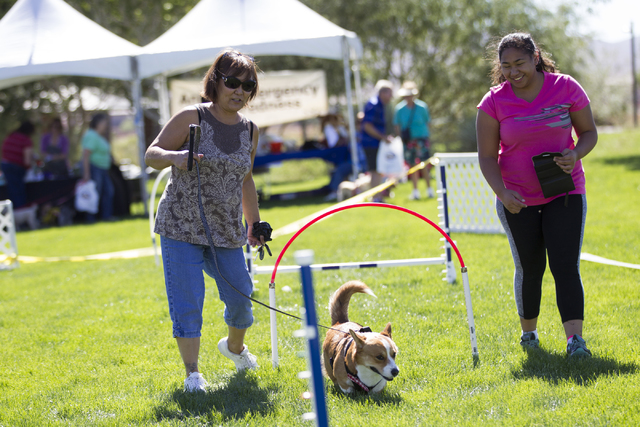 Susan Unaite, left, with her dog Baby, and daughter-in-law Diana walk the agility course during the Family, Fur and Fun Festival at Exploration Park on Saturday, Oct. 15, 2016, in Las Vegas. (Erik ...