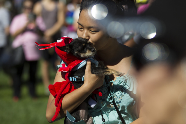 Arisa Henderson kisses her dog Babu in costume as a lobster after winning runner-up in the Halloween costume contest for cutest dog during the Family, Fur and Fun Festival at Exploration Park on S ...