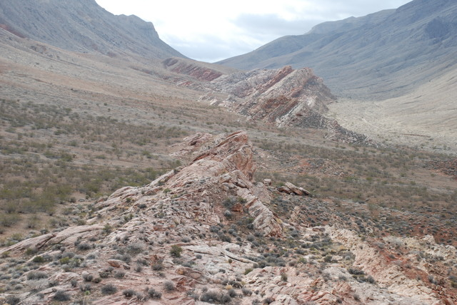 Fossilized reptile tracks 60 million years older than the earliest dinosaurs are preserved in a sandstone formation in the Gold Butte area northeast of Las Vegas, shown here in a photograph from D ...