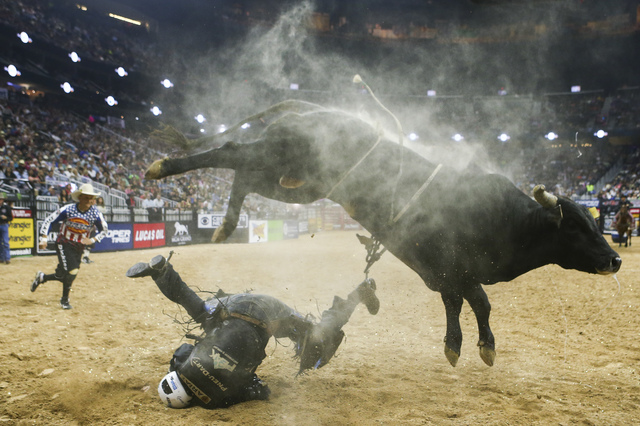 Wicked Stick throws off Nathan Schaper during the fourth round of the Professional Bull Riders World Finals at T-Mobile Arena on Saturday. (Chase Stevens/Las Vegas Review-Journal Follow @csstevens ...