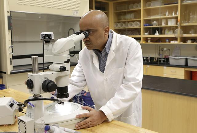 Kumud Acharya, chief technology officer for WaterStart, works in his lab at Desert Research Institute, Thursday, Nov. 17, 2016. (Bizuayehu Tesfaye/Las Vegas Review-Journal Follow @bizutesfaye)