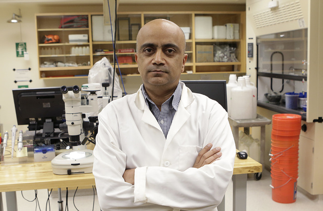 Kumud Acharya, chief technology officer for WaterStart, poses for a photo in his lab at Desert Research Institute, Thursday, Nov. 17, 2016. (Bizuayehu Tesfaye/Las Vegas Review-Journal Follow @bizu ...