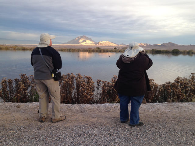 Ted and Paula Lupina catalog different kinds of waterfowl during the Audubon Society's Christmas Bird Count at the Henderson Bird Viewing Preserve Wednesday. (Henry Brean/Las Vegas Review-Journal)