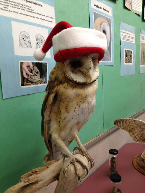 A festive stuffed barn owl greets visitors to the Henderson Bird Viewing Preserve on Wednesday. (Henry Brean/Las Vegas Review-Journal)
