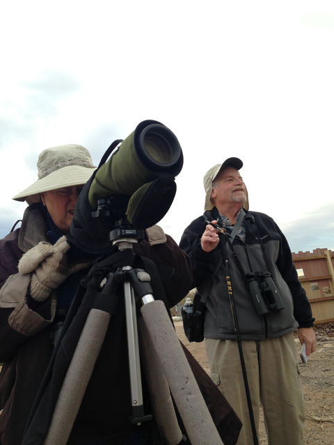 Paula Lupina looks through her spotting scope as her husband, Ted, waits to write down what she sees during Wedensday's Audubon Society Christmas Bird Count at the Henderson Bird Viewing Preserve. ...