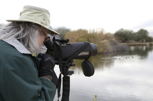 JeAnne Blackman of Henderson watches through her spotting scope as she participates in the Audubon Society's annual Christmas bird count at Bird Viewing Reserve Wednesday, Dec. 21, 2016, in Hender ...