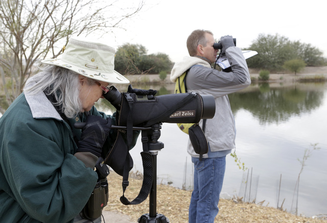 JeAnne Blackman and David McMullin, both of Henderson, participate in the Audubon Society's annual Christmas bird count at Bird Viewing Reserve Wednesday, Dec. 21, 2016, in Henderson. (Bizuayehu T ...