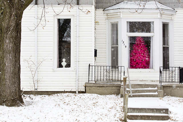 A hot pink Christmas tree is seen through a window as snow covers the yard of Luke and Megan Pettipoole's home near the Gerald R. Ford Birthsite, Saturday, Dec. 17, 2016, in Omaha, Nebraska. (Chri ...