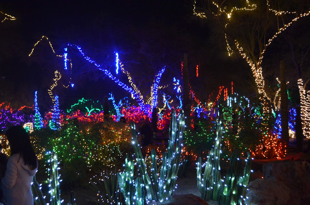 Ethel M holiday cactus garden, photographed Nov. 13, 2014, is slated to remain aglow through Jan. 1.  (Ginger Meurer/View)
