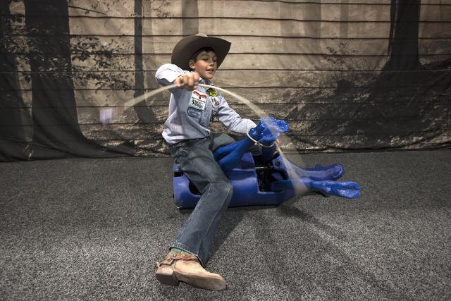 Pesos Tatum, 1, ties a decoy calf at the Cowboy Christmas gift show in the south halls of the Las Vegas Convention Center on Sunday, Dec. 4, 2016, in Las Vegas. (Rachel Aston/Las Vegas Review-Jour ...