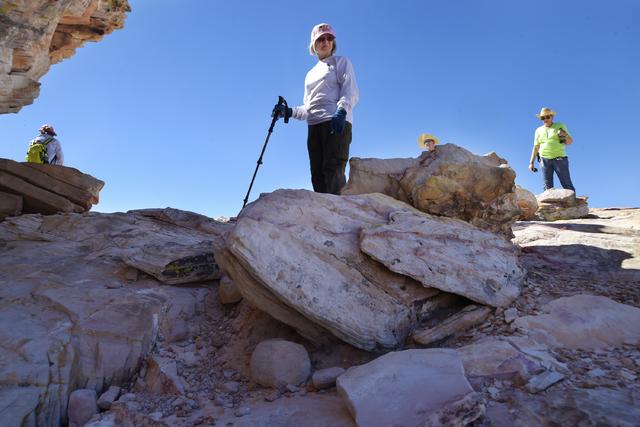 Hikers enjoy the desert around the Falling Man petroglyph area in the Gold Butte region Saturday, Oct. 15, 2016, northeast of Las Vegas. Sam Morris/Las Vegas News Bureau