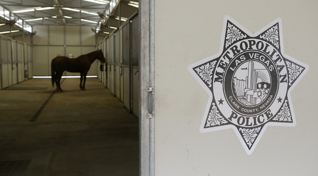A horse at the Mounted Unit training facility on Friday, Dec. 30, 2016, in Las Vegas. (Christian K. Lee/Las Vegas Review - Journal) @chrisklee_jpeg