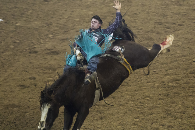 Wyatt Denny competes during the bareback riding competition on the final night of the National Finals Rodeo at the Thomas & Mack Center in Las Vegas on Saturday, Dec. 9, 2016. (Miranda Alam/La ...
