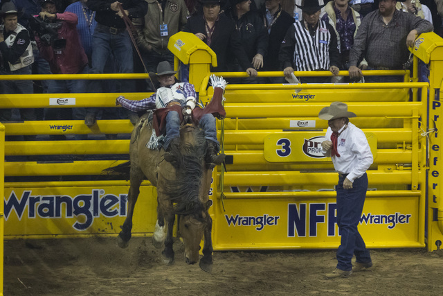 Tim O'Connell competes during the bareback riding competition on the final night of the National Finals Rodeo at the Thomas & Mack Center in Las Vegas on Saturday, Dec. 9, 2016. (Miranda Alam/ ...