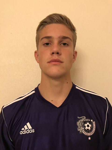 Court Diesner, Spanish Springs: The senior was named the Offensive Player of the Year for the Class 4A High Desert League. He also helped the Cougars to a spot in the Northern Region semifinals.