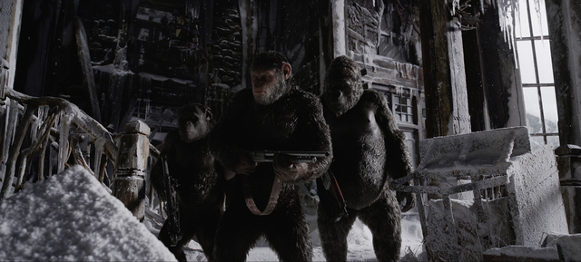 "The ever-evolving simians prepare for battle in a scene from ""War for the Planet of the Apes."" © 2016 Twentieth Century Fox Film Corporation."