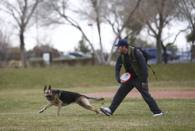 Matt Rebarchick throws a frisbee to his dog Payton at Willows Park in the Summerlin area of Las Vegas on Friday, Dec. 30, 2016. (Chase Stevens/Las Vegas Review-Journal) @csstevensphoto