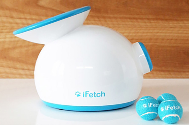 iFetch for small to mid-size dogs (Courtesy)