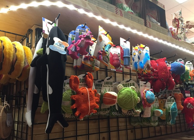 Dental dog toys hanging on racks at Woof Gang Bakery & Grooming in Las Vegas on Wednesday, Dec. 21, 2016. (Raven Jackson/Las Vegas Review-Journal) @ravenmjackson