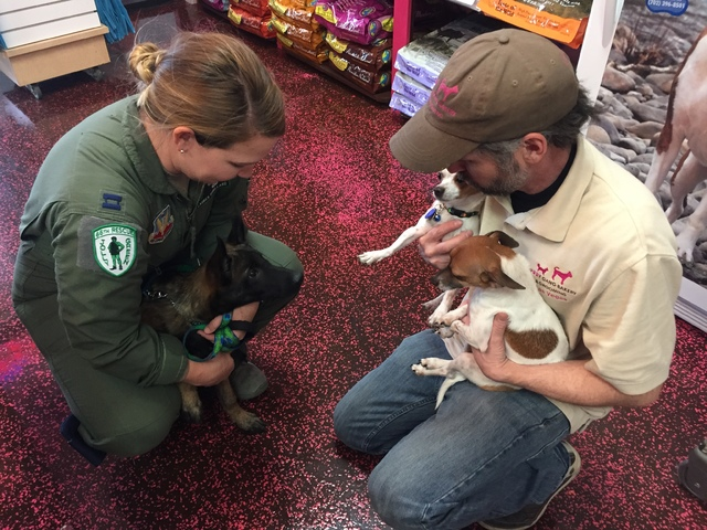 Lauren Robillard, left and Jim Breen hold their pets at Woof Gang Bakery & Grooming in Las Vegas on Wednesday, Dec. 21, 2016. (Raven Jackson/Las Vegas Review-Journal) @ravenmjackson