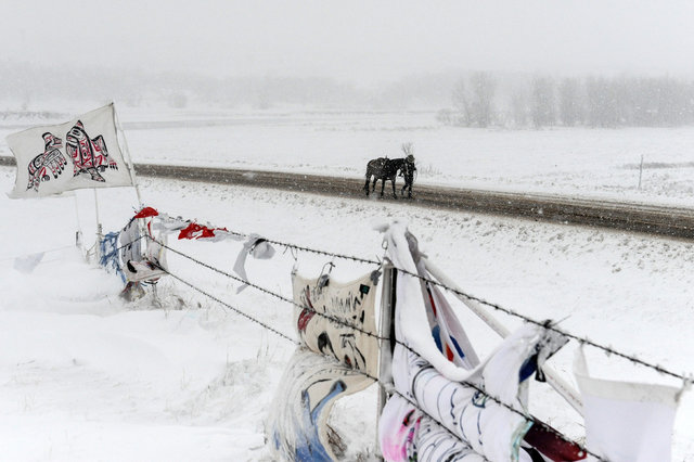 A person walks a horse past the Oceti Sakowin camp in a snow storm during a protest against plans to pass the Dakota Access pipeline near the Standing Rock Indian Reservation, near Cannon Ball, No ...