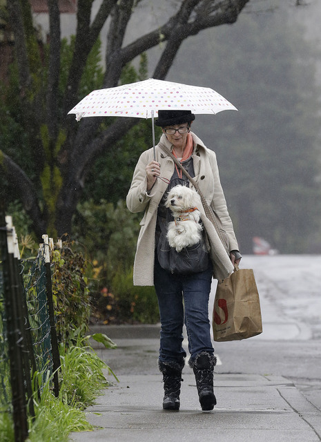 Gracie McKeowen carries her dog Rocky as she walks in the rain in Guerneville, Calif., Saturday, Jan. 7, 2017. On the California coast, weather forecasters anticipate a storm surge from the Pacifi ...
