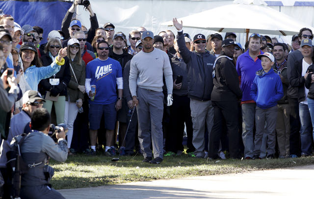 Tiger Woods waits to hit his second shot from the rough alongside a pathway on the 17th hole of the north course during the second round of the Farmers Insurance Open golf tournament Friday, Jan.  ...