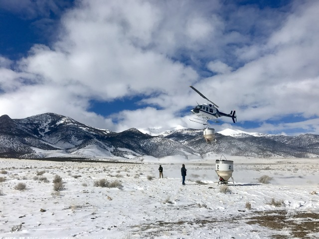 A helicopter lifts off Wednesday to drop a load of seeds on part of the Schell Creek Range east of Ely as part of an effort to restore areas burned by wildfires. (Chris McVicars/Bureau of Land Man ...