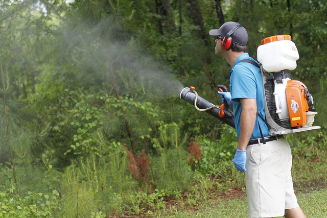 In this Friday, May 16, 2014, file photo, Daniel Lewis, Mosquito Authority, sprays to kill mosquitos before the summer season, in Jacksonville, N.C. (Maria Sestito/The Jacksonville Daily News via  ...