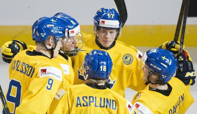 Sweden's Rasmus Dahlin (8) celebrates with teammates Fredrik Karlstrom (17), Gabriel Carlsson (9), Rasmus Asplund (18) and Jonathan Dalen after scoring during the second period of a  preliminary r ...