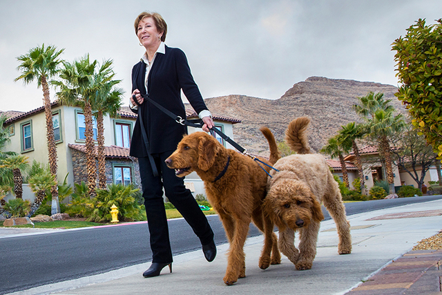 Retired Deloitte executive Eileen Raney walks her dogs around the block outside her Las Vegas home on Wednesday, Jan. 4, 2016. (Benjamin Hager/Las Vegas Review-Journal)