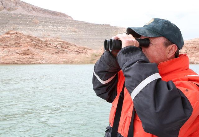Wildlife biologist Ross Haley scans the skies over Lake Mead in search of bald eagles on Tuesday, Jan. 12 2017. (Bizuayehu Tesfaye/Las Vegas Review-Journal) @bizutesfaye