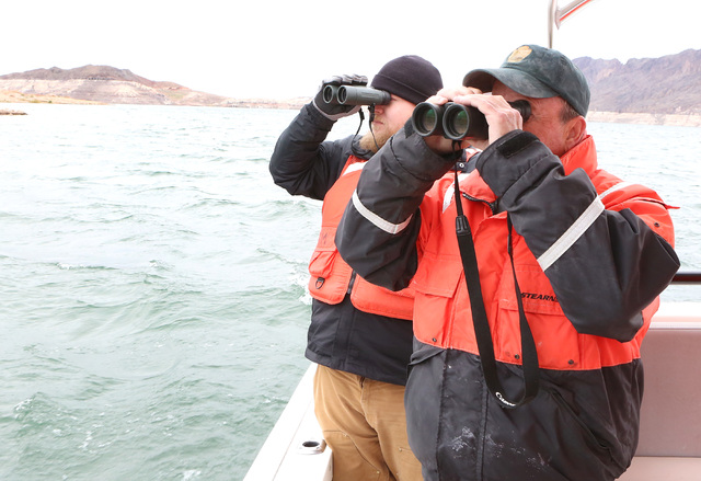 Todd Frey, left, a volunteer observer from the Great Basin Institute, and Ross Haley, wildlife biologist, scan the skies over Lake Mead in search of bald eagles on Tuesday, Jan. 12 2017. (Bizuayeh ...