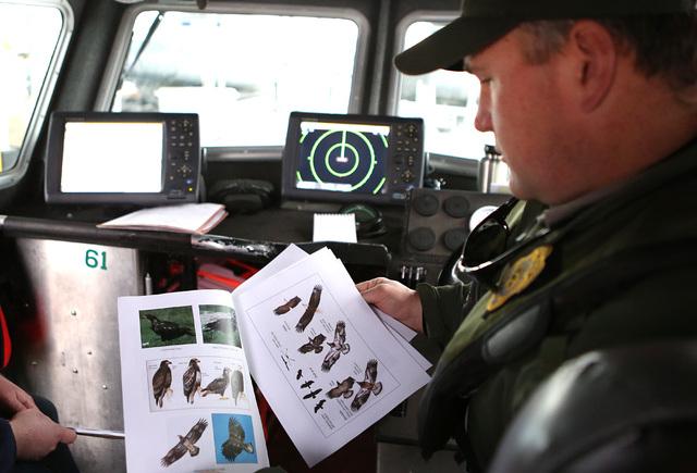 National Park Service ranger Mark Hnat showsreporters photos of different types of eagles on Tuesday, Jan. 12 2017, in Lake Mead. (Bizuayehu Tesfaye/Las Vegas Review-Journal) @bizutesfaye