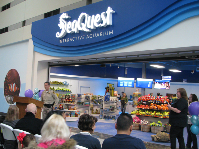 Seaquest Aquarium Opens At Boulevard Mall Las Vegas