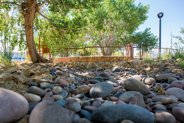 A natural spring bed resides in the newly renovated Kiel Ranch, one of the oldest areas of North Las Vegas, June 29, 2016. (Elizabeth Brumley/Las Vegas Review-Journal) @elipagephoto