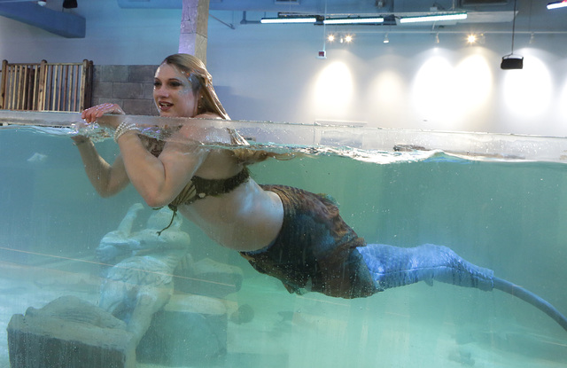 Costumed mermaid Heather Guy shares the Caribbean Cove tank with stingrays at the new SeaQuest Interactive Aquarium at the Boulevard Mall. (Bizuayehu Tesfaye/Las Vegas Review-Journal)@bizutesfaye