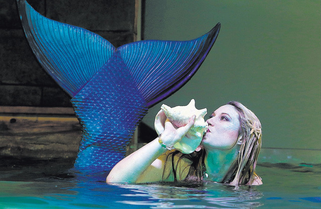 Costumed mermaid Heather Guy blows a shell, calling onlookers to SeaQuest Interactive Aquarium's Caribbean Cove, where she swims with stingrays. (Bizuayehu Tesfaye/Las Vegas Review-Journal)@bizute ...