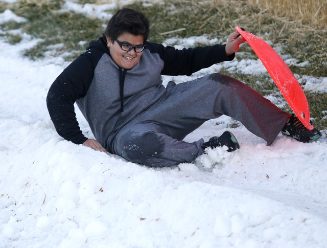 Christian Terry, 11, falls off of his sled at the Arbors Tennis and Play Park on Saturday, Jan. 28, 2017, in Las Vegas. The park offered sledding and other activities to the visitors. (Christian K ...