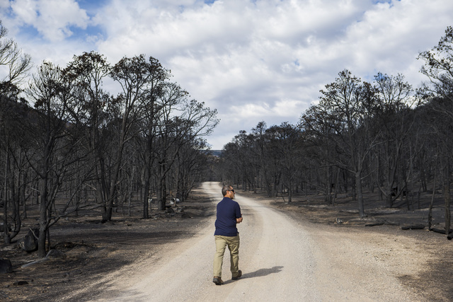 Ben Roberts, chief of natural resources at Great Basin National Park, surveys damage from the Strawberry Fire at Strawberry Creek campground in Great Basin National Park on Thursday, Aug. 25, 2016 ...