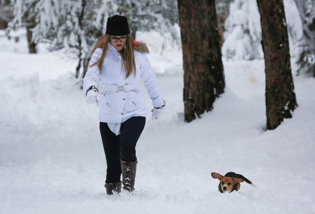 Valentina Robison, 18, who is originally from Costa Rica but now lives in Las Vegas,2 hops through snow with 7-month-old beagle Chloe in Kyle Canyon outside of Las Vegas on Friday, Jan. 13, 2017.  ...