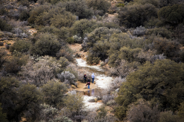People stand near a running creek below the Red Rock Canyon Overlook on Friday, Jan. 13, 2017. Jeff Scheid/Las Vegas Review-Journal Follow @jeffscheid
