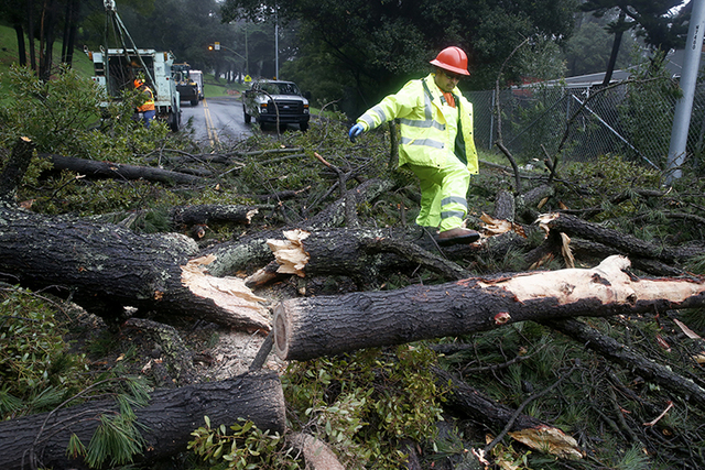 A Department of Public Works crew removes a fallen tree after a storm that was blocking both directions of Mountain Boulevard, Wednesday, Jan. 4, 2017, in Oakland, Calif. Wet winter weather slamme ...