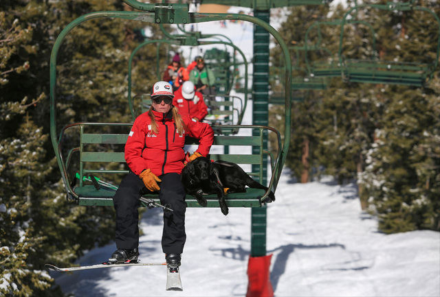 Ski Patrol Manager Michelle French, 56, rides a chairlift up the mountain with nearly two-year-old rescue dog Lida after a training exercise at Lee Canyon ski resort on Mount Charleston on Thursda ...